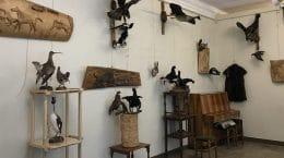 В галерее «5 Дом» в Жуковском открылась выставка «Охота и природа»