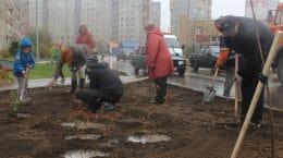 На улице Левченко в Жуковском заложили Аллею героев