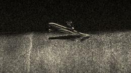 Гидролокатор «Неман» обнаружил очередную подлодку в Финском заливе