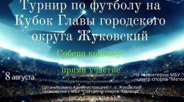Кубок Главы городского округа Жуковский