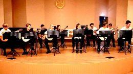 Старший ансамбль гитаристов ЖДШИ №1