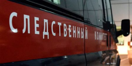 Расследовать дело о нападении собаки на ребенка в Жуковском будут ГСУ СК России по Московской области